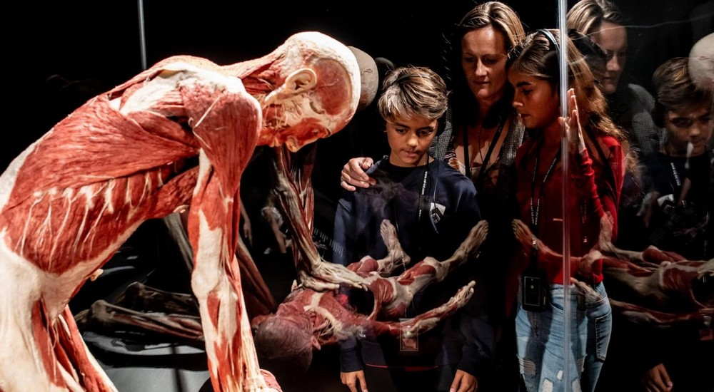 Exhibition Body Worlds - Audioguide OP6 and FreeSound for museums